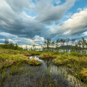 Pond by Benny Høynes - Landscapes Prairies, Meadows & Fields ( clouds, sky, nature, pond, norway )