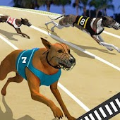 Download Crazy Dog Racing Fever APK
