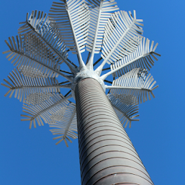 Nikau Sculpture by Aaron Stephenson - Artistic Objects Other Objects ( sculpture, wellington nz, art, cityscape, street scene, waterfront, nikau palm )