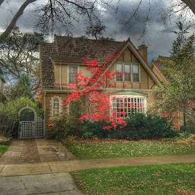 TudorFall by Louis Perlia - Buildings & Architecture Homes ( clouds, red, sky, tree, bushes, color, grass, english tudor, house )