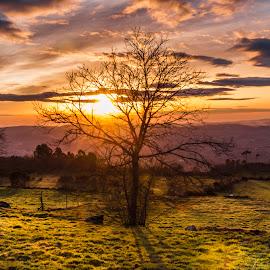 Sunbeams by Olhar Captado Sara Barros - Landscapes Sunsets & Sunrises ( clouds, sunbeams, green, sunset, montain, sun, fields, olhar captado )