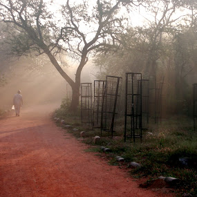 Keep Walking...you will find a way for sure. by Sridhar Balasubramanian - City,  Street & Park  City Parks ( walking, paths, park, india, strolling, morning, sun rays, delhi )