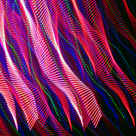 Streamers by Jim Barton - Abstract Patterns ( red, laser light, blue, colorful, light design, laser design, laser, laser light show, light, streamers, science )