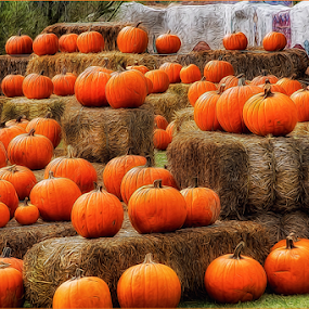 0579-PHH-1012-02-15 by Fred Herring - Public Holidays Halloween (  )