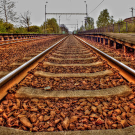the track in the world by Vláďa Lipina - Transportation Railway Tracks