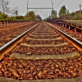 the track in the world by Vláďa Lipina - Transportation Railway Tracks