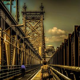 Passing Queensboro bridge by Maks Erlikh - Buildings & Architecture Bridges & Suspended Structures ( passing the brince, artistic expression, simbol, bridge superstructure, queensbopro bridge )