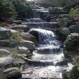 beautiful water fall by Joe Abruscato - Nature Up Close Water