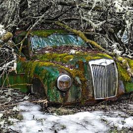 by Kai Brun - Transportation Automobiles (  )