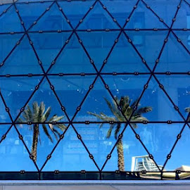 Reflecting Palms by Roxanne Dean - Buildings & Architecture Architectural Detail (  )