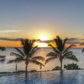 Beautiful Zanzibar Sunset by Dawid Van Der Merwe - Instagram & Mobile Android ( sunset, islands, paradise, landscape, ocean view )