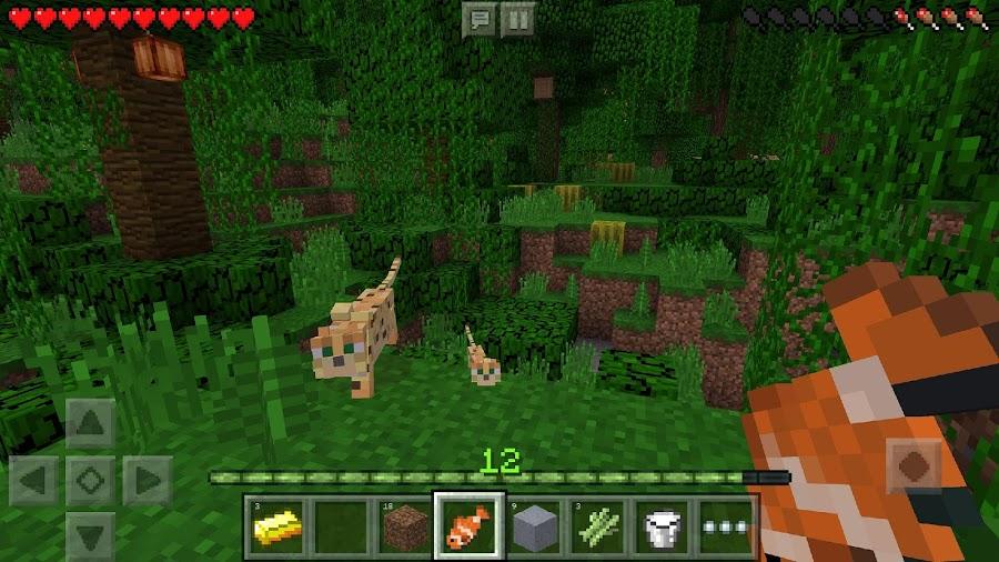 لعبة Minecraft: Pocket Edition 1.4.4.0 28b1vxJQe916wOaSVB4C