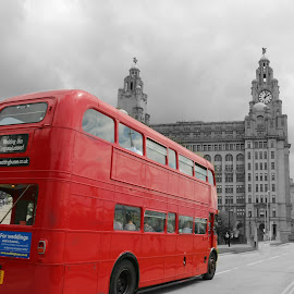 The big red bus by Stephen Carrigan - Transportation Other ( bus, red, black and white, splash of colour, architecture, heritage )