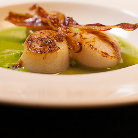 Seared Scallops with Pea Veloute and Crispy Pancetta