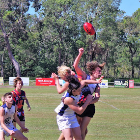 waiting for the ball by Carolyn Lawson - Sports & Fitness Australian rules football