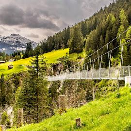 Mountain world by Linda Brueckmann - Landscapes Mountains & Hills