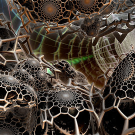 Grid Iron by Rick Eskridge - Illustration Abstract & Patterns ( abstract, jwildfire, mb3d, fractal, twisted brush )
