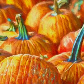 Arkansas Pumpkin Patch by Allen Crenshaw - Digital Art Places ( orange, digital art, pumpkins, october, photography, arkansas, halloween )