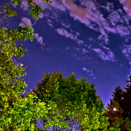Nightlife by Balaji Nagarajan - Landscapes Cloud Formations ( night photography, colors, night, night shot, nightscapes, nightscape, nightlife )
