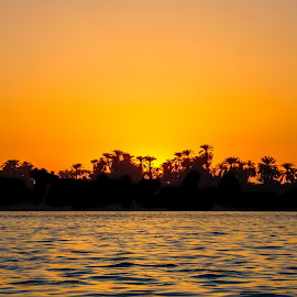 Sunset an Nile River by Sergey Sibirtsev - Landscapes Waterscapes ( water, luxor, sunset, silhouette, yellow, nile, sun, egypt, river,  )