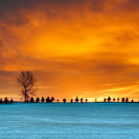 Sunrise Fire by William Ducklow - Landscapes Prairies, Meadows & Fields