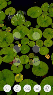 Green lotus leaf black themes - screenshot