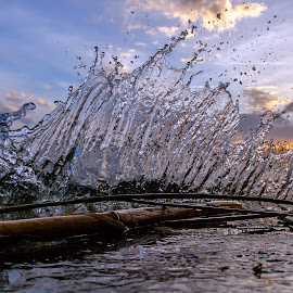The splash by Robert Panoski - Nature Up Close Water ( #splash #wave #lake #water #sunset )