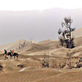 by Gusti Mhn - Landscapes Deserts