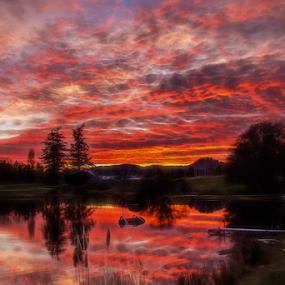 Sunset at the lake by Doug Clement - Landscapes Sunsets & Sunrises ( clouds, reflection, nature, sunset, lake, landscape, colours )