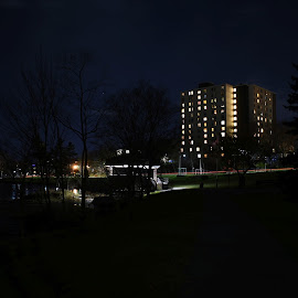 by John Geddes - City,  Street & Park  City Parks
