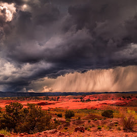 by Becca McKinnon - Landscapes Cloud Formations ( clouds, escalante, desert, devil's garden, utah, hole in the rock road, southwest, summer, grandstaircase national monument, storm, flash flood )