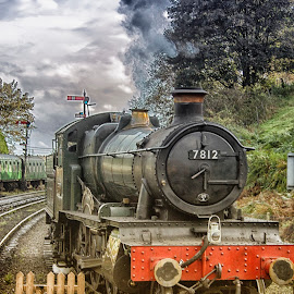 The Old Steamer by Dez Green - Transportation Trains ( steam engine, railway, railroad, steam train, old train,  )