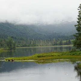 Margarete Lake by Frank-Linda Malquist - Landscapes Forests ( clouds, salmon headwaters, spawning ground, alaska, lake )