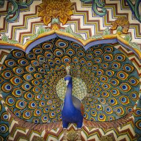 Jaipur-09398.jpg