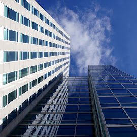 Almere Office Building 5 by Anita Berghoef - Buildings & Architecture Office Buildings & Hotels ( office, almere, building, sky, offices, the netherlands, perspective, windows, office building, architecture, looking up )