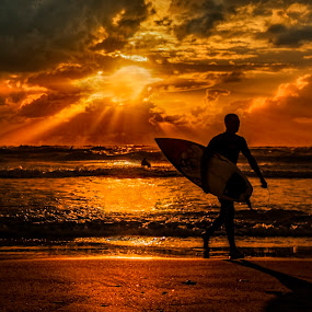 The Surfer by Gaby Halperin - Sports & Fitness Surfing ( red, surfer, sunset, sport, ocean )
