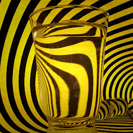 ART of refraction by Janette Ho - Artistic Objects Still Life (  )