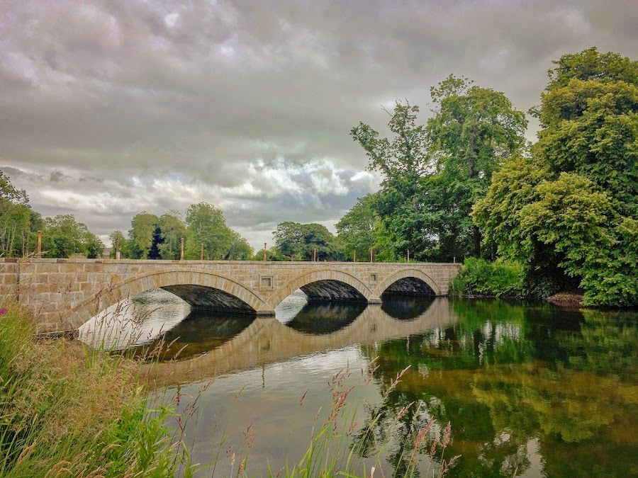 Pitfour bridge by Derek Robinson - Buildings & Architecture Bridges & Suspended Structures ( pitfour, aberdeenshire, bridge, lake, scotland )