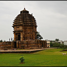 Megheswar Temple by Prasanta Das - Buildings & Architecture Places of Worship ( temple, red stone, odia style, classic )