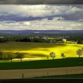 Before the Storm. by Antonín Vystrčil - Landscapes Prairies, Meadows & Fields ( country houses, tree, green, yelow, path, czech republic, trees, shading, diagonal, road, landscape )
