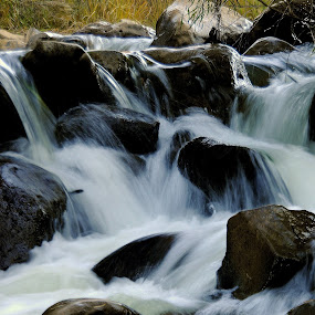 Rio Grand River by Janice Pritchard - Landscapes Waterscapes ( water, landscape,  )
