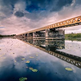 Moerputtenbrug again by Rob Menting - Buildings & Architecture Bridges & Suspended Structures ( canon, water, eos, sky, nature, den bosch, bridge, noord-brabant, landscape, canon eos 70d )