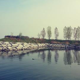 Nature by Vamsi Naradasu - Nature Up Close Water ( lake ontario, water, awesome, toronto, weather, lake )