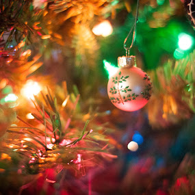 by Mary Phelps - Public Holidays Christmas ( lights, home, tree, color, ornament, christmas, bokeh,  )