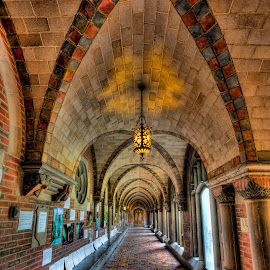 Old Seminary Hall at UofC by John Williams - Buildings & Architecture Other Interior ( arched ceiling, university of chicago, color tile, hall, interiors, hallway, architecture, chicago, seminary )