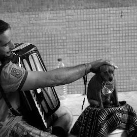 A by Sorin Di Rokko - Black & White Street & Candid