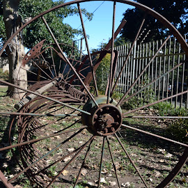 Old farming equipment by Richard Booysen - City,  Street & Park  City Parks