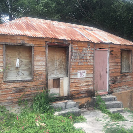 by Liz Rosas - Buildings & Architecture Homes ( old house, cabin, st. croix, tax man, abandoned house, island, decay )