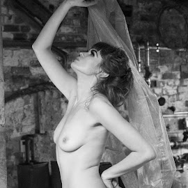 Sohalia by Helen Quinn - Nudes & Boudoir Artistic Nude ( attic, fine art, black and white )