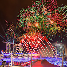 Countdown by Joseph Goh Meng Huat - Public Holidays New Year's Eve ( countdown, countdown 2013, firework, fireworks, singapore )